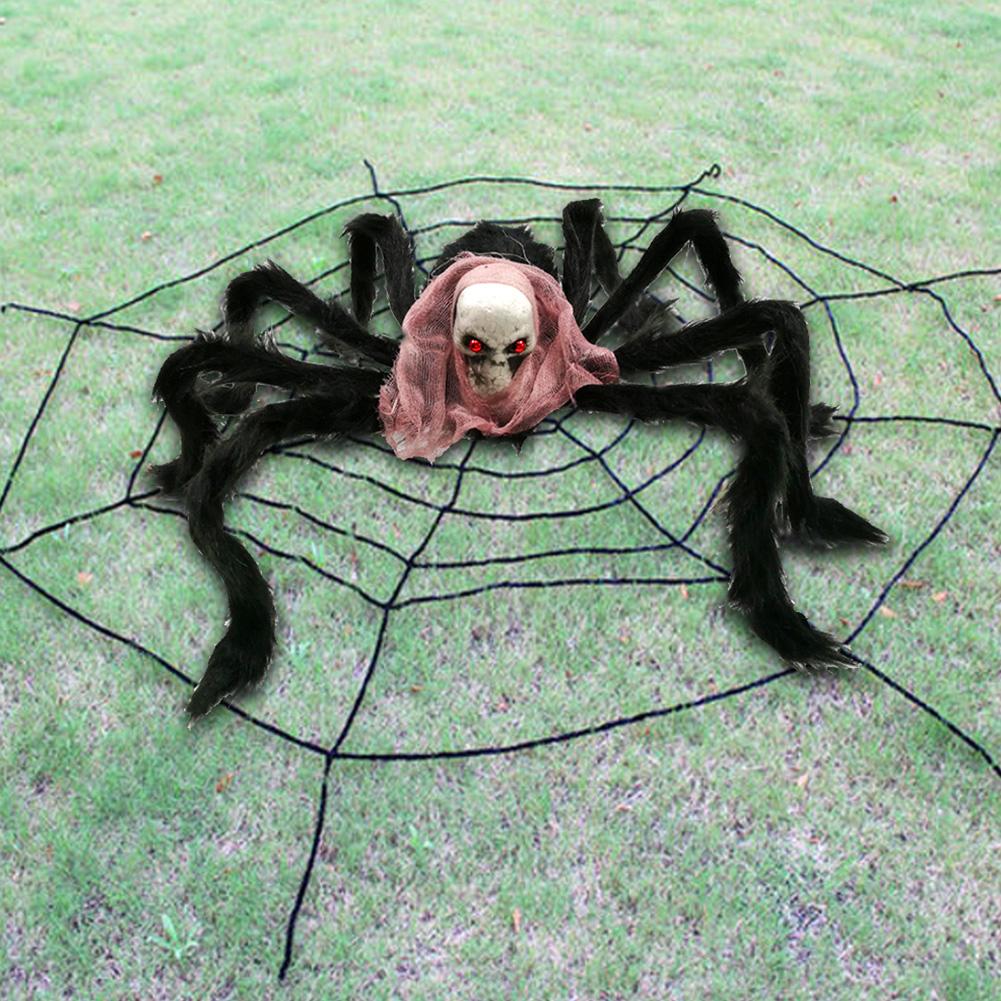 15 самых опасных пауков в мире   fresher - лучшее из рунета за день
