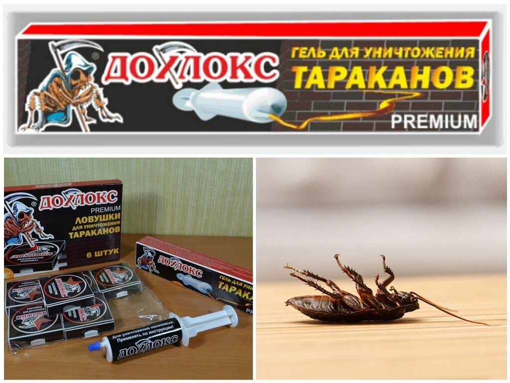 Дохлокс гель от тараканов: состав и принцип действия, отзывы