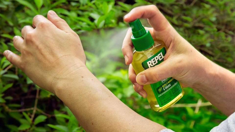 Как избавиться от комаров в домашних условиях подручными средствами: советы