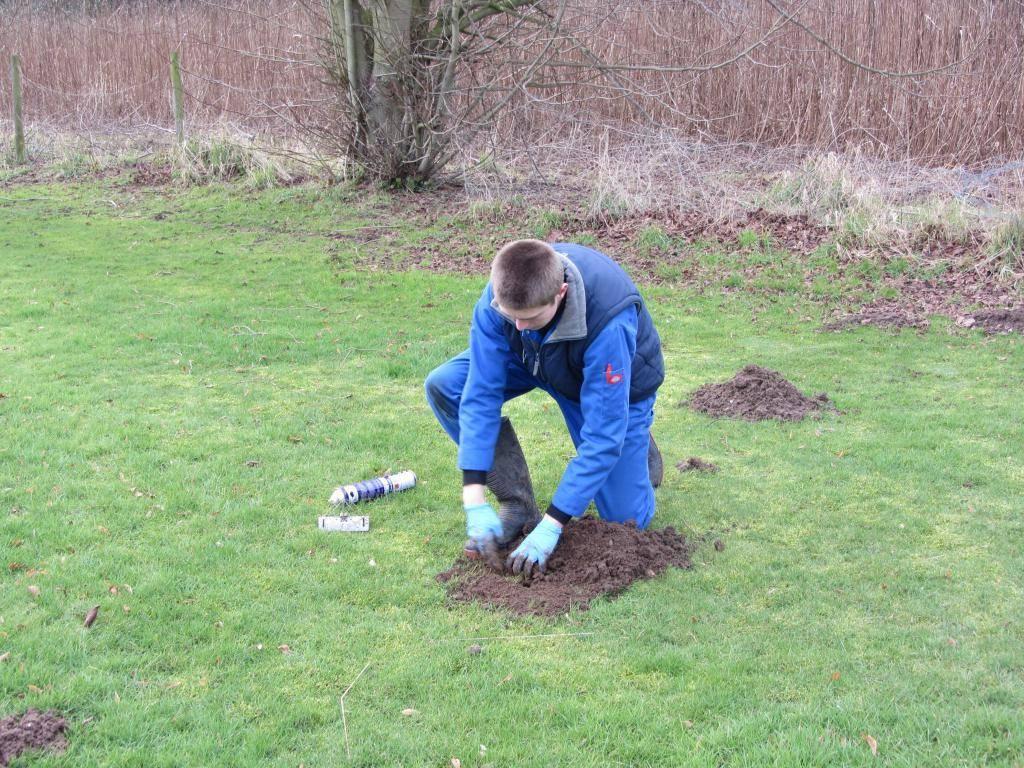 Борьба с землеройками, кротами на садовых участках дачах и огороде (видео)