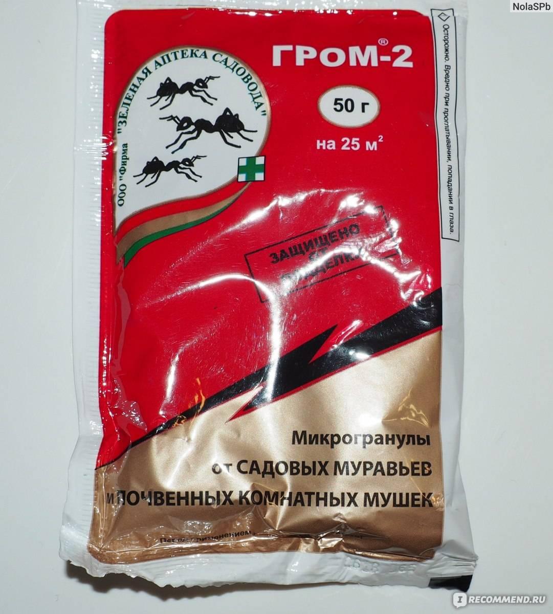 Средство гром-2 в борьбе с муравьями и мошками. как работает средство от муравьев гром 2