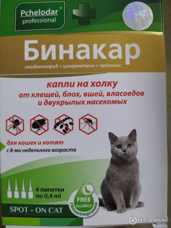 Спрей для отпугивания кошек: выбираем лучшее средство