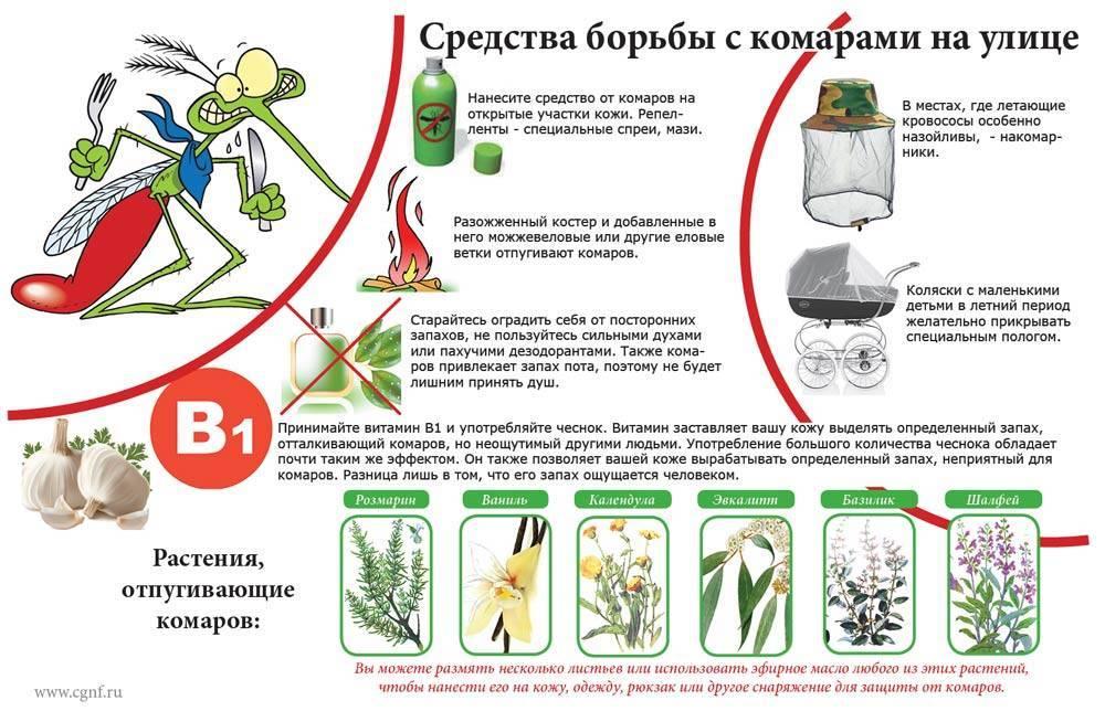 Как избавиться от комаров в квартире и доме: химические и народные средства, рейтинг лучших приборов