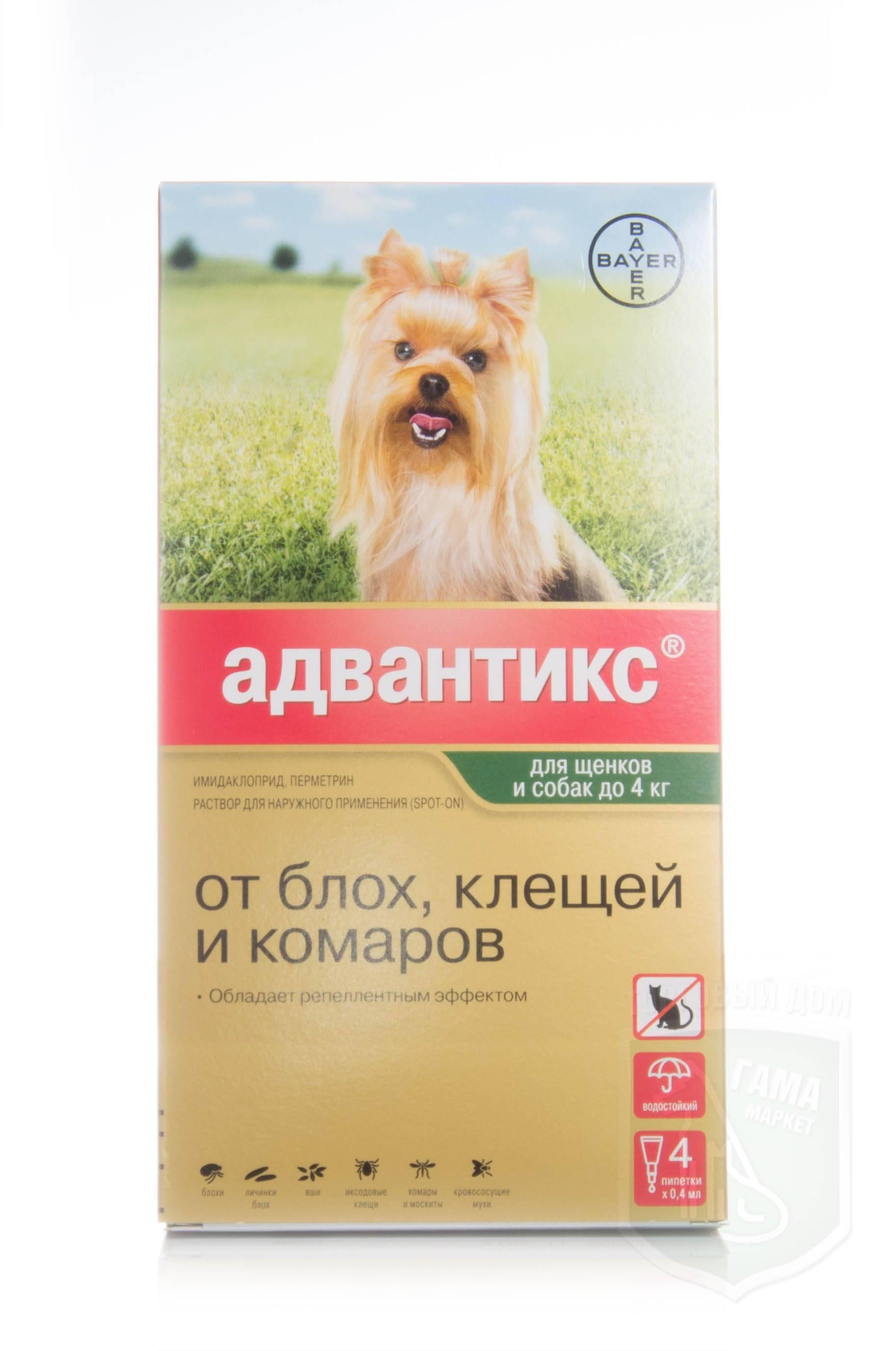 Адвантикс от блох для собак: отзывы, инструкция