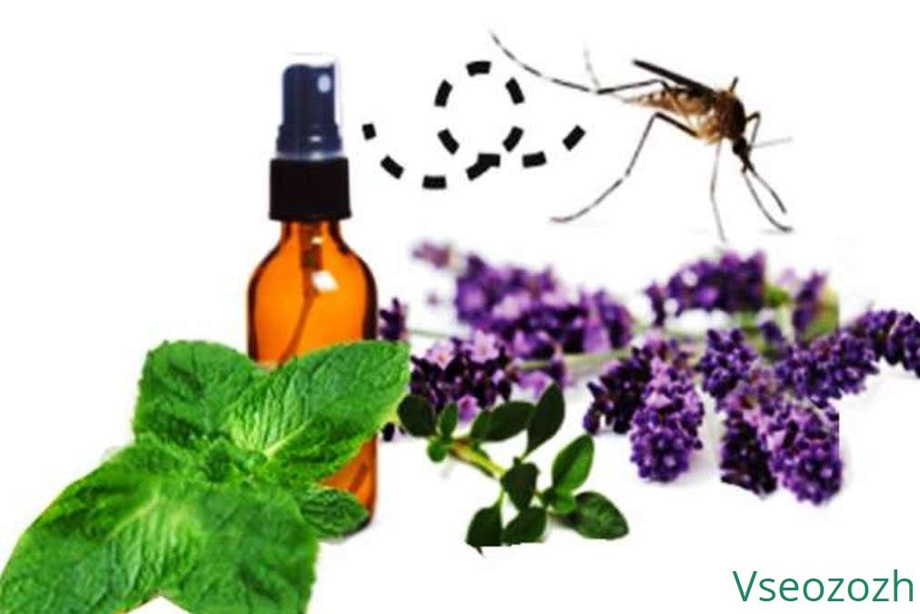 Эфирные масла от комаров и мошек. эфирные масла от комаров – безопасный способ защиты