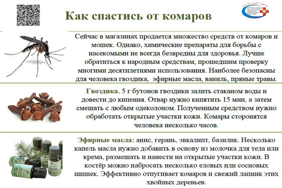 Средства защиты от комаров: топ-7 натуральных средств