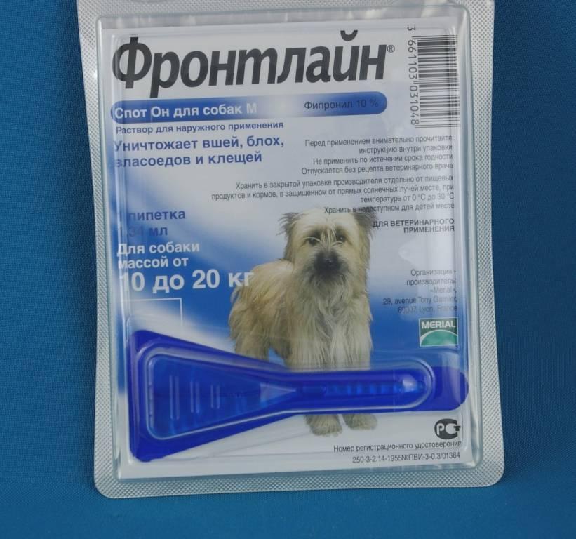 Фронтлайн капли для собак, спрей, комбо: инструкция, отзывы, цена