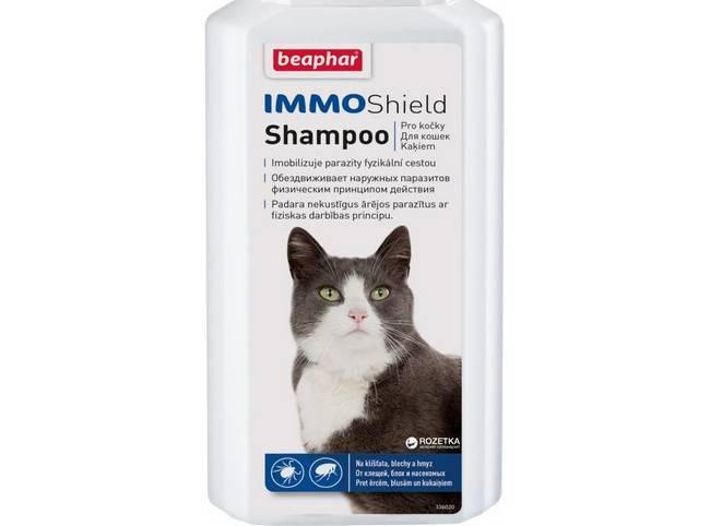 Шампунь от блох для кошек: состав, как действует, как часто использовать