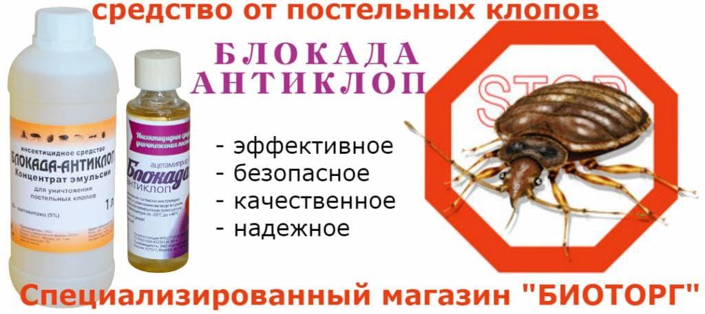 Что добавить в обойный клей при борьбе с тараканами
