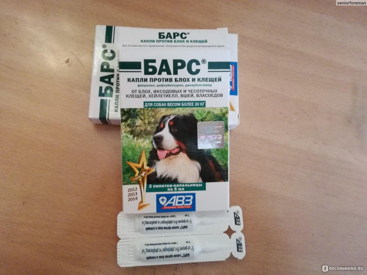 Капли барс для собак - от клещей, блох, при отодектозе, инструкция по применению, аналоги, отзывы