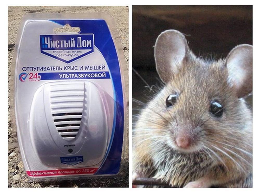 Ультразвуковой отпугиватель грызунов чистый дом от крыс и мышей
