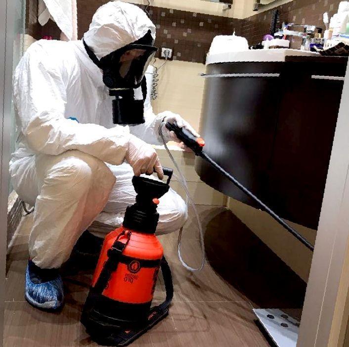 Как обработать квартиру от блох: средства и препараты для обработки помещения