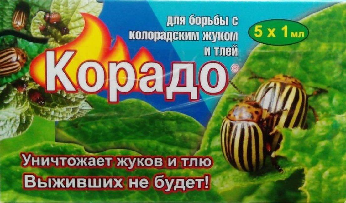 Корадо от колорадского жука: инструкция по применению