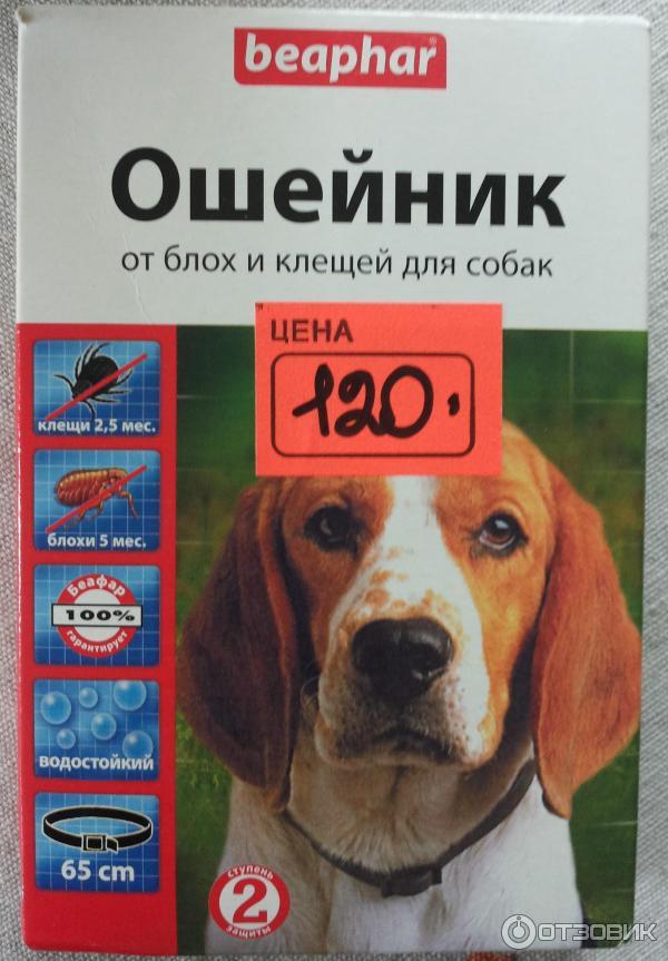 Ошейники от блох и клещей для собак: рейтинг и отзывы