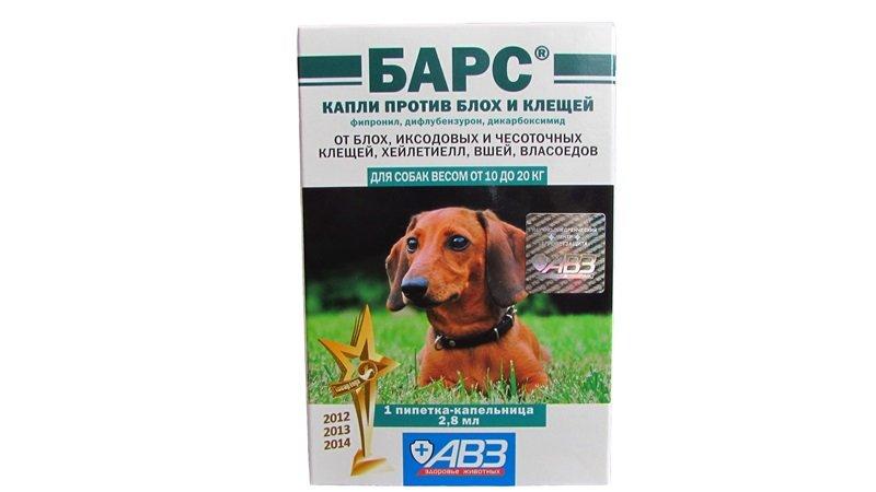 Таблетки, капли и средства от клещей для собак | цена, отзывы, прививки