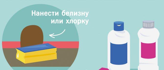 20 лучших средств, как избавиться от запаха сдохшей под полом мыши