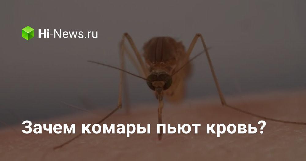 """Какую группу крови больше всего любят комары. кто тут самый вкусный? людей с какой группой крови комары """"любят"""" больше"""