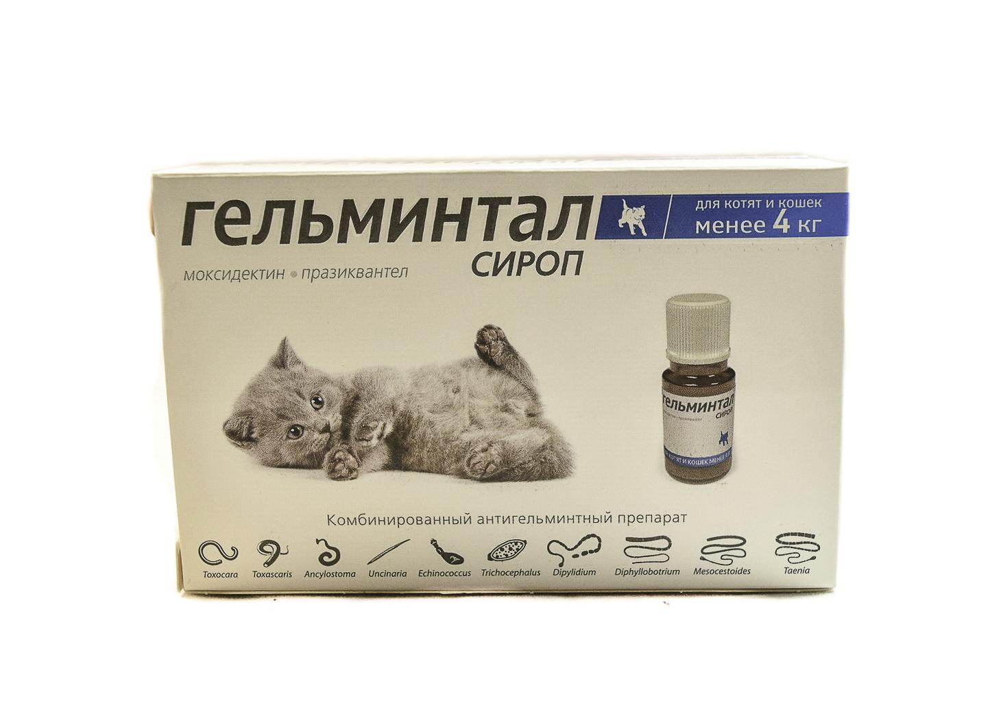 Гельминтал для кошек: инструкция по применению, формы выпуска и возможные побочные эффекты