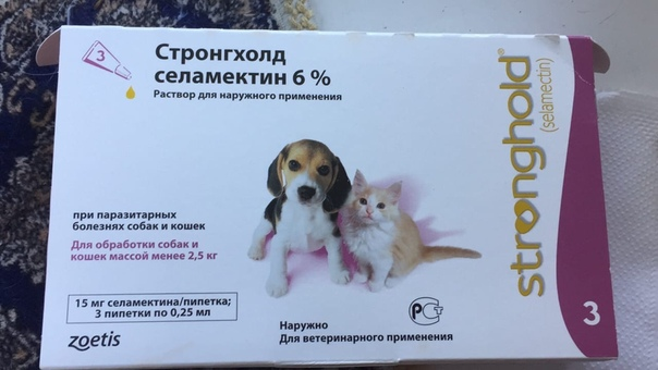 Стронгхолд для собак: инструкция по применению капель от блох