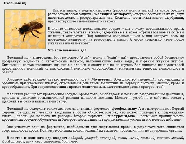 Народные средства при укусе пчелы: чем лечить и чем мазать укус пчелы в домашних условиях
