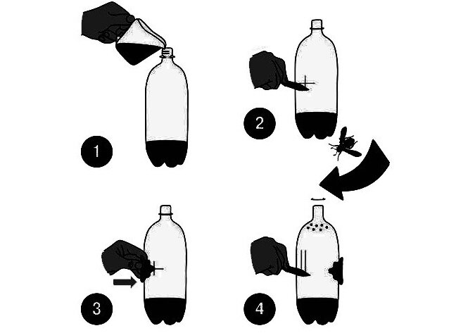 Ловушка для мошек своими руками: пошаговая инструкция с видео