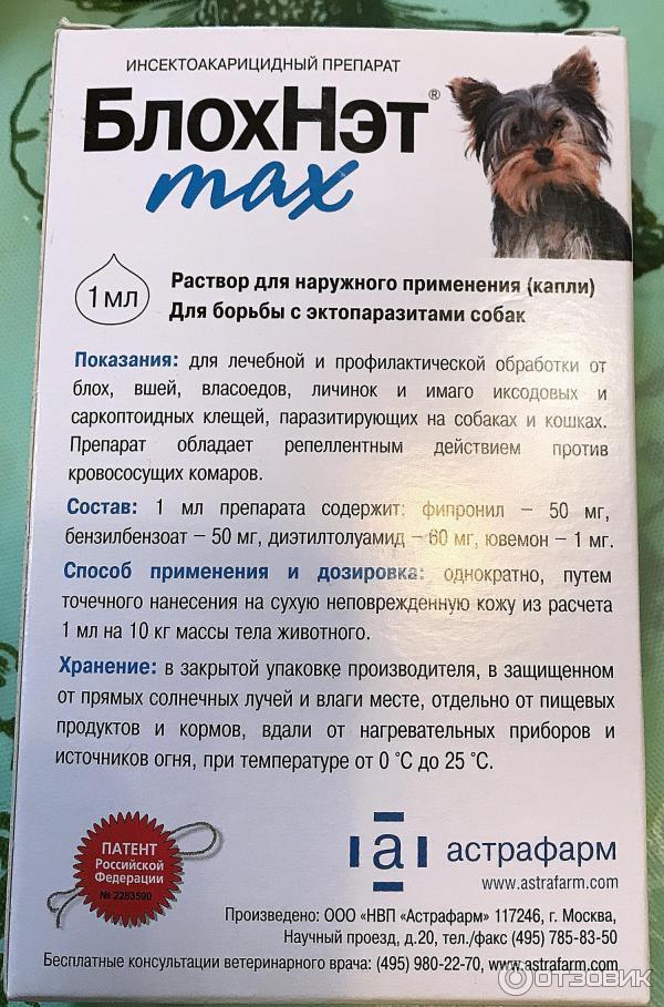 Блохнэт - капли для собак: состав, показания к применению, отзывы