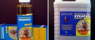 Инструкция по применению средства «кукарача» против тараканов