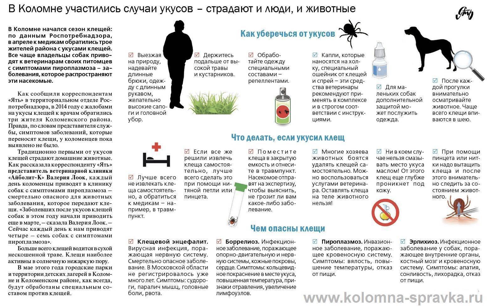 Укус насекомого код по мкб 10 - симптомы и лечение болезней