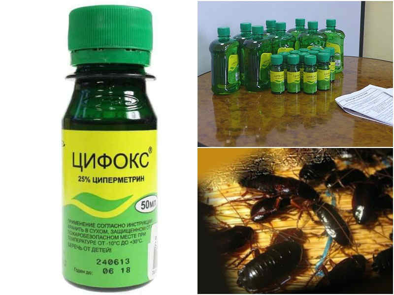 Цифокс – надежная защита от клопов и других насекомых