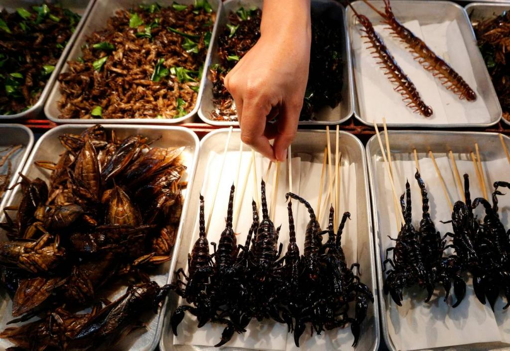 Самые необычные блюда из насекомых   ух ты!