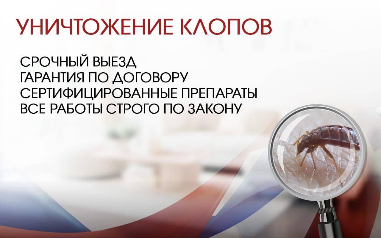 ❶ уничтожение клопов в москве в квартире с гаранией: отзывы │ цены │ службы │