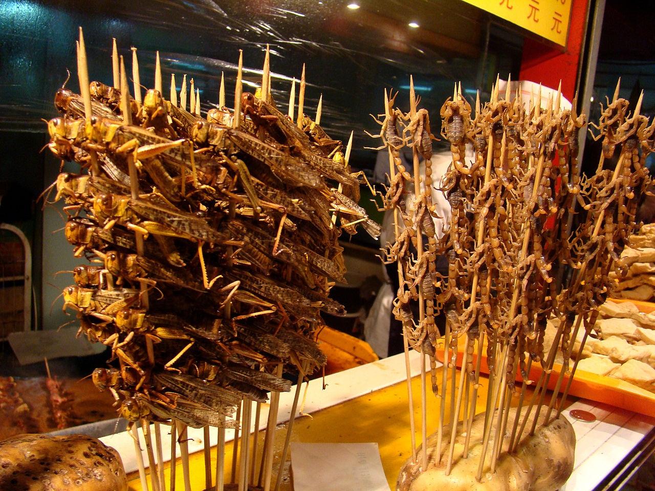 Насекомые - как готовить различных насекомых, рецепты