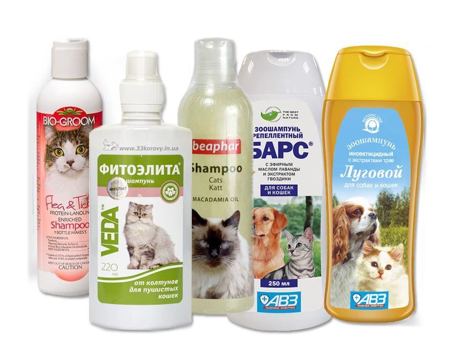 Шампунь от блох для кошек котят