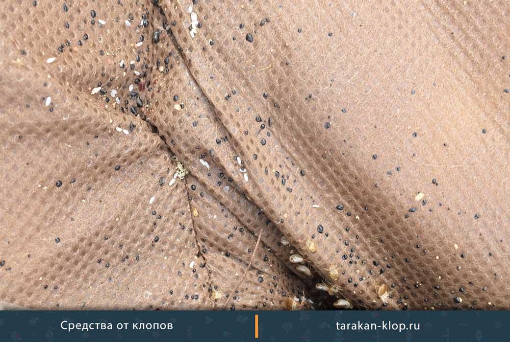 Какие следы оставляют клопы на постели и на обоях?