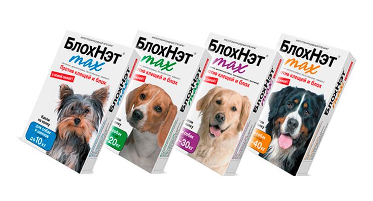 Блохнэт для собак: показания и инструкция по применению, отзывы, цена