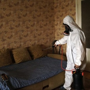 Уничтожение клопов в спб. дезинфекция от клопов в квартире с гарантией