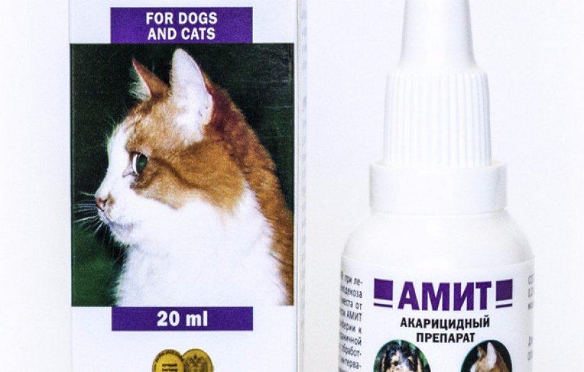 Капли от отита и ушного клеща для котят и взрослых кошек: какое средство лучше выбрать для лечения кошачьих ушей?
