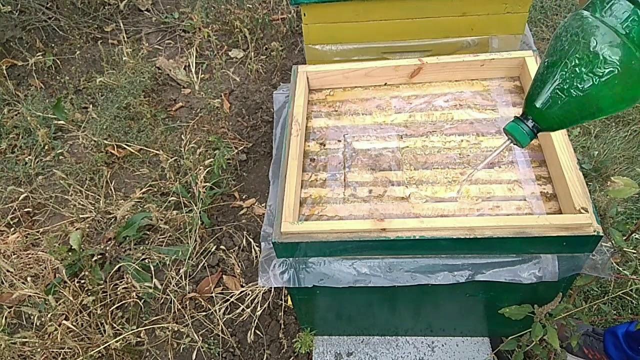 Лечение пчел бипином осенью: инструкция по применению