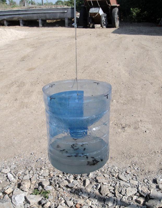 Ловушка для ос из пластиковой бутылки | [инструкция]