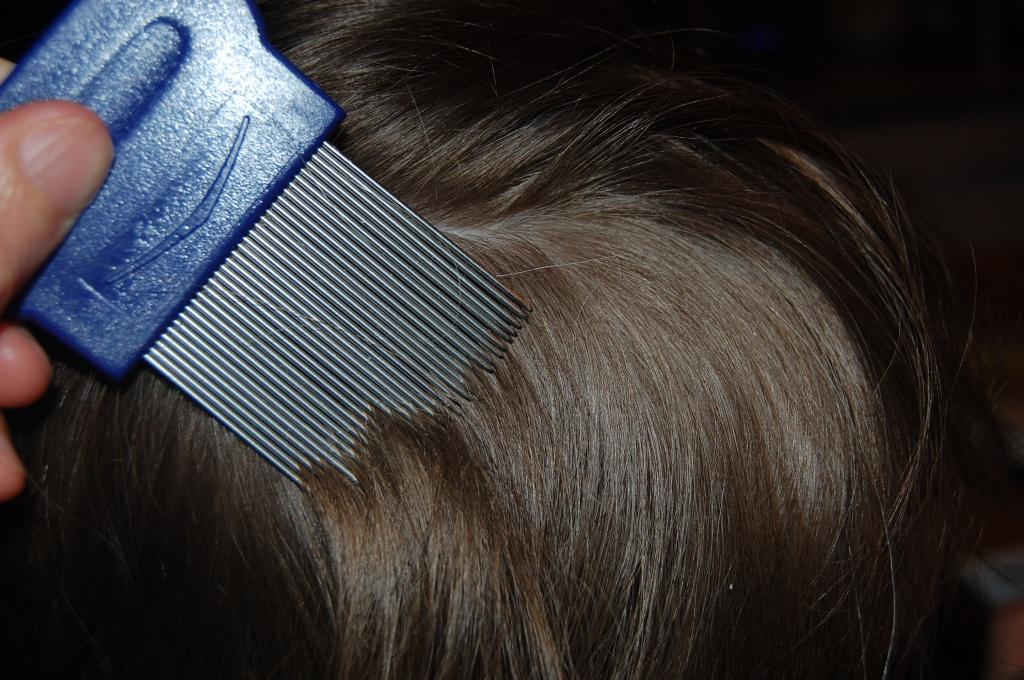 Как вывести гнид с длинных волос в домашних условиях у взрослых и детей