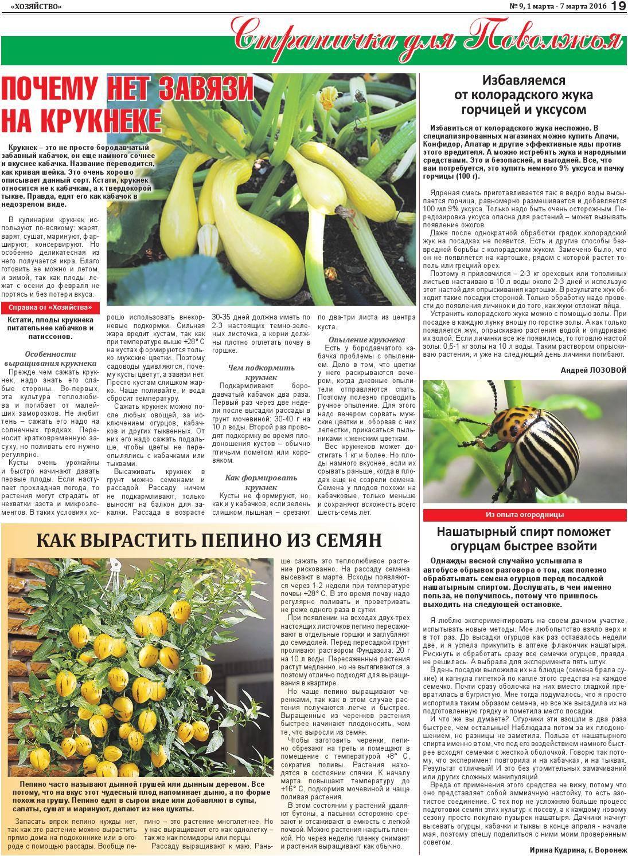 Горчица и уксус от колорадского жука на картофеле: рецепты, как применять, отзывы