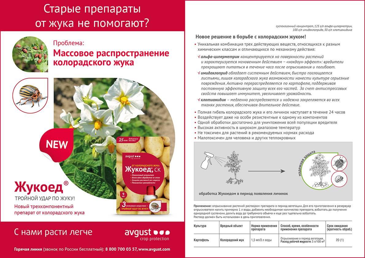 Жукоед от колорадского жука: инструкция по применению, отзывы