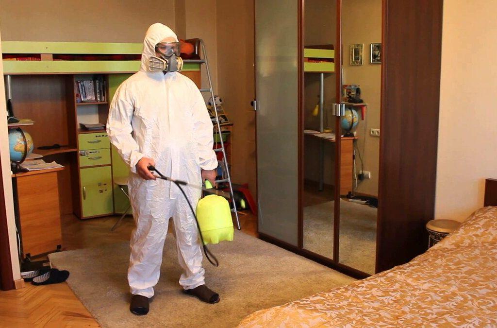Подготовка квартиры к обработке от клопов, чем травит клопов санэпидемстанция