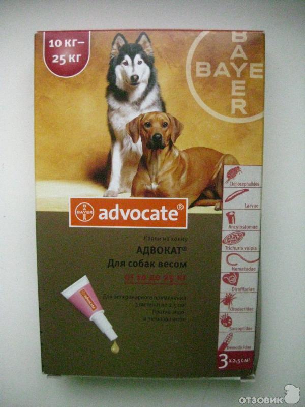 Ветеринарный препарат адвокат для собак: инструкция по применению - вет-препараты