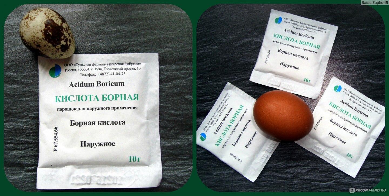 Борная кислота от тараканов: проверенные рецепты с яйцом, сахаром и сладким сиропом