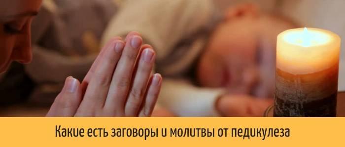 Заговоры и молитвы от вшей и гнид для взрослых и детей - от вшей и блох у собаки