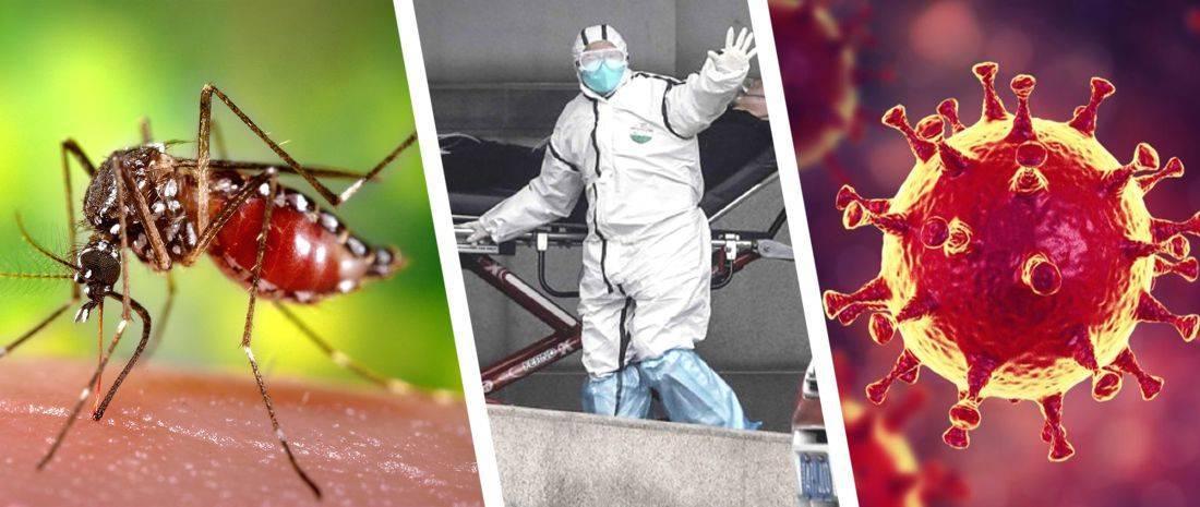 Переносят ли комары гепатит и какие еще есть пути передачи?