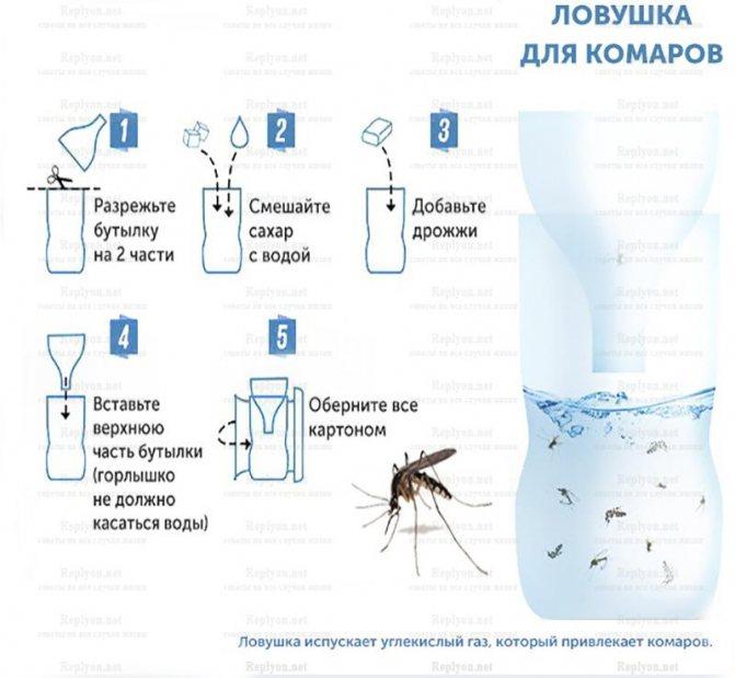 Народные средства от комаров и мошек на природе и в доме