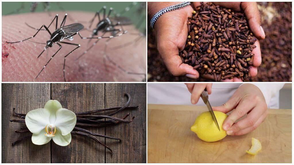 Как избавиться от комаров магазинными и народными средствами