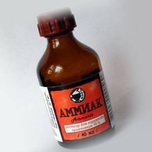Нашатырный спирт от тараканов рецепт
